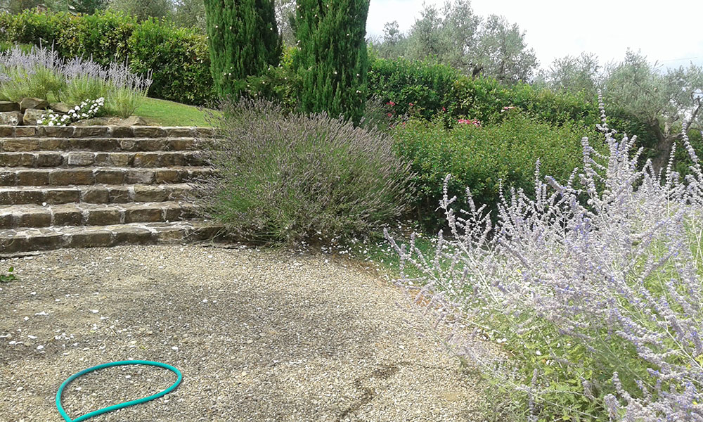Impianti irrigazione firenze siena lucca progettazione for Progettazione giardini siena